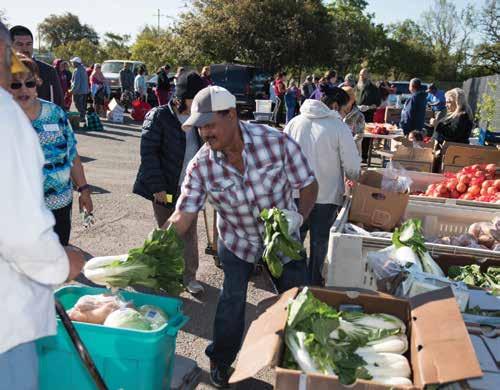 emergency-food-shelter-grants